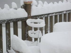 the tomato cage looks really weird with snow on it!