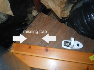 missing trap