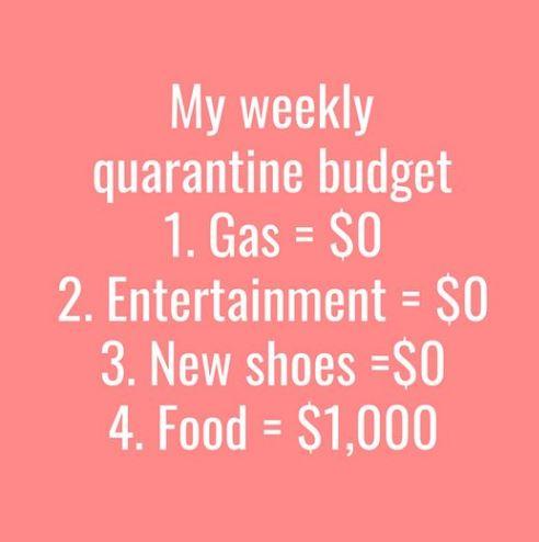 quarantine budget